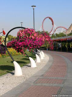 Organic Gardening In South Florida Landscape Elements, Landscape Architecture, Landscape Design, Dubai Garden, Dubai Miracle Garden, Gazebos, Garden Design Plans, Garden Route, Garden Nursery
