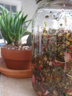 Herbal Concoction: The Queen of Hungary's Water
