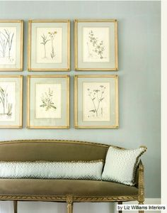 The Green Room Interiors Chattanooga, TN: Never Gets Old - Framed Botanicals