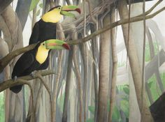 Two TouCan