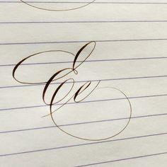 1,053 個讚好,75 則回應 - Instagram 上的 Suzanne Cunningham(@suzcunningham):「 Finally caught up! Do you have a few calligraphers that write letters your very favorite way? Like… 」