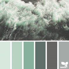 today's inspiration image for { color sea } is by @jenelle.botts ... thank you, Jenelle, for another incredible #SeedsColor image share!