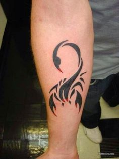 Scorpion Tattoos for Arm