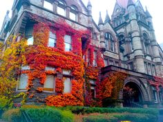 grotesquery: creepsylvania: I took this picture on campus (UofT) today. I was just standing there looking at the colours for so long. What A Beautiful World, Autumn Cozy, University Of Toronto, Fall Pictures, Beautiful Buildings, Places Around The World, Far Away, Art Photography, Scenery