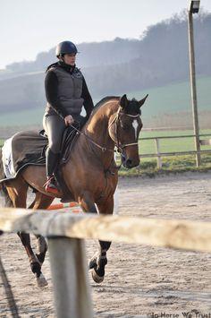 In Horse We Trust / IHWT