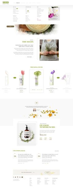 SEED is an amazing clean PSD template. With the most modern, friendly and natural style, customers will feel like they are standing in front of a large, green,fresh field. They will be overwhelmed ...