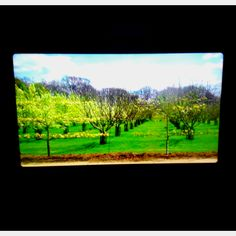 Inside the caravan : these 'windows' are videos and the caravan takes off!