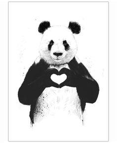Solti's panda, geweldig!