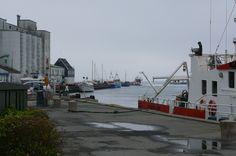Haven van Kerteminde, de silo's bestaan niet meer. foto 3-5-2008