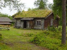 Gräsbevuxna stuga i Dalarnas län, Sverige - Moss-covered hut in Dalarna province, Sweden