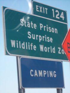Camping State Prison Surprise Wildlife ... http://www.facebook.com/media/set/?set=a.10150231111287240.337852.26012002239&type=1