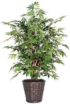 4' Potted Artificial Japanese Maple Tree in Brown Pot * Want additional info? Click on the image.
