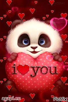 Panda I Love You Gif - Panda I Love You Gif love quotes gif i love you love images love gifs love pic love pic images love - Beautiful Love Pictures, I Love You Pictures, Love Pics, Funny Love Images, I Love You Funny, Gif Pictures, Cute Panda Wallpaper, Love Wallpaper, Wallpaper Desktop
