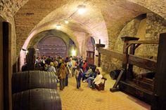 Exhibitions of Viticulture Wine Cask, Two Brothers, Czech Republic, Tourism, Rarity, Cellar, Regional, Gallery, Dating