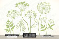 wildFlower Vector | Wild Herbs Flowers silhouette vector ~ Illustrations on Creative ...