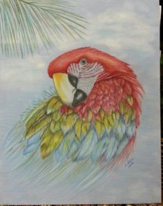 A colored pencil picture I did on suede board.  Loving the colors.  LLOVE