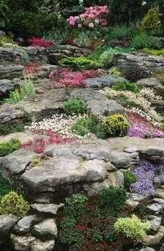 Come creare un giardino roccioso - Giardino roccioso colorato