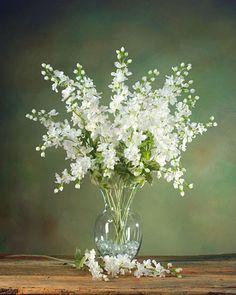 White Delphinium Stems