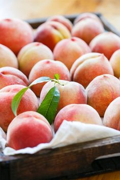 40 Trendy Fruit And Vegetables Photography Farmers Market Veggies Fresh Fruits And Vegetables, Fruit And Veg, Peach Vanilla Jam, Vegetables Photography, Peach Trees, Stone Fruit, Just Peachy, Delicious Fruit, Farmers Market