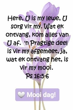 Bible Quotes, Bible Verses, Goeie More, Afrikaans Quotes, Good Morning Wishes, Beautiful Landscapes, Psalms, Christianity, Believe