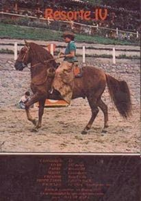 CABALLOS COLOMBIANOS: CABALLOS HISTORICOS DEL PASO FINO COLOMBIANO Performance Engines, Horse World, Brio, Horses, Seasons, Animals, Horse Breeds, Animal Pictures, Animales