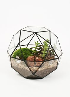 Lovely Handmade Geometric Glass Terrariums | Jeannie Huang