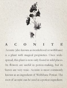 Witches Banes P4  Aconite In Harry Potter and the Prisoner of Azkaban Professor Lupin drinks a potion of Wolfsbane to help prevent his transformation into a werewolf. Aconites are feminine herbs and like many baneful herbs and flowers it is associated with the planet Saturn, the element of water and the Goddess Hecate.