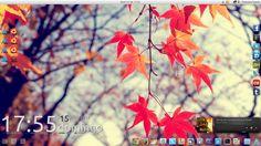 Arch Linux XFCE // Linux Desktop Customization