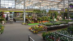 Flower Nursery, Garden Centre, Display Ideas, Street View, Amp, Plants, Floral Nursery, Plant, Planets