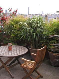 Bowles and Wyer, roof terrace, table and chair, london, roof terrace, planting, planters