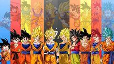 Goku evolución