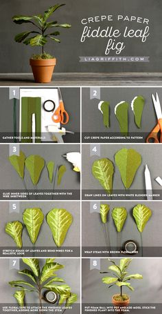 Potted Crepe Paper Fiddle Leaf Fig - Lia Griffith Crepe Paper Fiddle Leaf Fig T. Paper Flowers Wedding, Paper Flowers Diy, Flower Bouquet Wedding, Handmade Flowers, Flower Crafts, Diy Paper, Fabric Flowers, Crepe Paper Crafts, Crepe Paper Flowers Tutorial