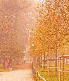 autumn in karlskrona, sweden