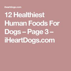 12 Healthiest Human Foods For Dogs – Page 3 – iHeartDogs.com