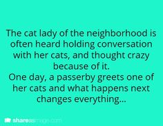 The cat lady in the neighborhood is often heard holding conversations with her cats, and thought crazy because of it. One day, a passerby greets one of her cats and what happens next changes everything...