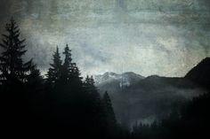 Good Night - Marmont Hill