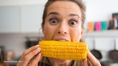 """Corn rootworms now resistant to GMO Bt corn, and even the biotech scientists are admitting Bt corn is huge failure. So they head back to the lab, to create more toxic corn and lie to more people about """"safety"""" and """"efficacy"""" of GMO"""