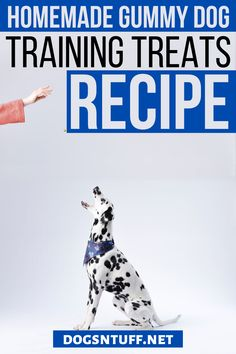 Are you looking for an easy to make dog treats recipes for your dog training? This treat only needs THREE ingredients! #fdogrecipes #dogtreats #dogfood Dog Training Treats, Training Your Dog, Dog Treat Recipes, Dog Food Recipes, Healthy Herbs, Dog Facts, Homemade Dog Treats, How To Make Homemade, Dog Quotes