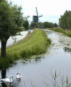 Zuid Holland - Krimpenerwaard - The Netherlands