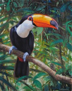 Portfolio with artis´s more recent works of art. Hermida presents a wide variety of his paitings, about themes of animals, still life and human figure. Tropical Animals, Tropical Art, Tropical Birds, Exotic Birds, Colorful Birds, Bird Silhouette, Wildlife Art, Bird Prints, Animal Paintings