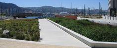 Waitangi Park, Wellington New Zealand.  An awesome urban park designed by Wraight + Associates.