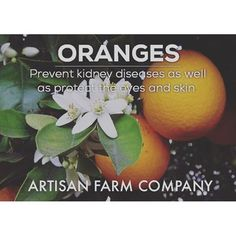 Backyard Benefits Series XII: #Orange prevents #kidney disease, and makes a great #juice. Let Artisan Farm Company help you. Sign up for our email list, or give us a buzz. www.artisanfarmcompany.com :ghost: ArtisanFarmCo ----------------------------------