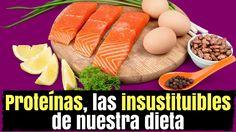 Proteínas, las insustituibles de nuestra dieta