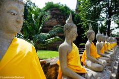 Buddhas lined up in a temple in Ayutthaya Thailand. Visiting a temple is always a good culture experience. No matter part of Thailand you visit will always find a beautiful temple. Thailand has over 30,000 active temples.