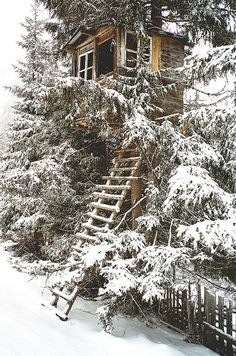 The Infinite Gallery : Snow tree house