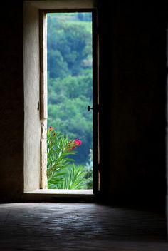 Door , beautiful play of light. Red of the Oleander is brilliant.