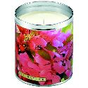 Aunt Sadie's Cherry Blossom Candle: Take in the floral fragrance of lilac with the beautiful Cherry Blossom decorative label. A fresh and light scent for all to enjoy!