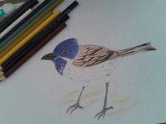 Aprendendo a desenhar e pintar.