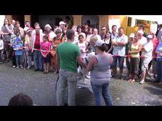 Tierheim Riem Sommerfest 2011 - YouTube Videos, Youtube, Music, Animal Shelter, Musica, Musik, Muziek, Youtubers, Youtube Movies