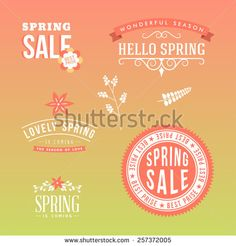 Set of floral design elements. Vector collection with leafs and flowers for greeting flyers and banners